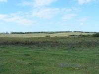 Rozległe zalewowe łąki i pastwiska nad Bohem - miejsce naszych zmagań z szybkim bekasem