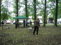Wystawa w Chorzowie w 2009  - ocenia Wojtek Burski
