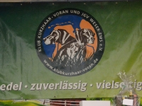 Symbol klubu Voran  Wesser-Ems