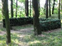 Ogródek do pokazu aportu lisa - zaczynają się zawody