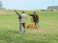 Węgier nic sobie nie robi z hałasu strzelby Pana Wojtka