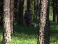 ... a po chwili ruszamy w las