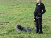 Fouski Kazimierza zachowują kamienny spokój pokazując wszystkim jak pies powinien się zachowywać poza pracą
