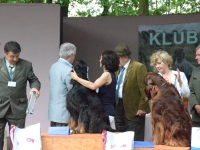 Najpiękniejszy pies wystawy - puchar z rąk szefa Klubu Wyżła