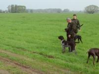 Prezentacja psów i przewodników