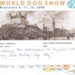 Światowa Wystawa Bratysława Słowacja 2009 r. Karta oceny