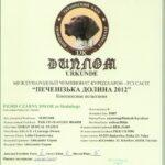 Dyplom - Konkurs Wielostronny wg regulaminuu Kleemana Charków 2012