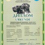 Konkurs wielostronny - Winnica 2012