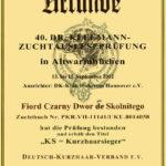 Konkurs im. Dr Kleemanna 2012 - Dyplom