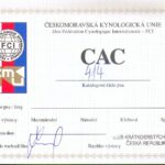 CAC Hlucin 2011