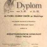 MFT Będzin 2012 Dyplom I stopnia