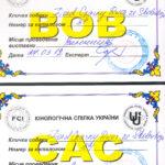 Wystawa Federacji Psów Myśliwskich Ukrainy Winnica,Ukraina 2012 CAC, BOB