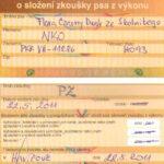 Certyfikat użytkowości - Czechy
