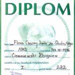 Dyplom Havirov Czechy 22.05.2011