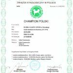 Championat Polski