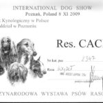 res.CACIB Poznań 8.11.2009