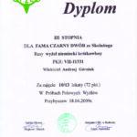FAMA dyplom III st. z Prób Polowych Przybyszew 2009