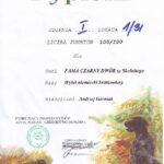 Próby polowe Czerniejewo 2010 dyplom I stopnia