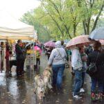 Typowy obrazek z ulic wystawowego miasteczka - deszcz, deszcz i jeszcze raz deszcz