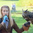 W słoneczną niedzielę 21 października Okręgowa Rada Łowiecka w Katowicach organizowała Łowieckiego Hubertusa u stóp Pałacu Pszczyńskiego. Bogaty program imprezy obejmował między innymi konną pogoń za lisem, pokazy sokolnicze no […]