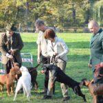 Przewodnicy ze swoimi psami