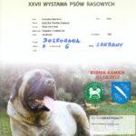 Dyplom Wystawa Rybnik 7.10.2012