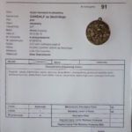 Karta oceny - GANDALF ze Skolnitego - Młodzieżowy Zwycięzca Klubu Wyżła 2013