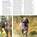"""""""Kynologia na rozdrożu"""" ŁP 8/2014 str. 3"""