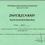 `BOB - CACIB Rzeszów 9.11.2014 - BOB