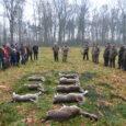 Tradycyjnie w listopadzie, moje koło poluje metodą szwedzką w Lesie Baranowickim na grubego zwierza i drapieżniki. Łowisko jest bogate w zwierzynę a rozkłady w przeszłości bywały wręcz imponujące, stąd chętnych […]
