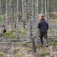 Tradycyjne wigilijne polowanie w moim kole. Polowaliśmy 2,5 godziny metodą szwedzką w naszym rudzkim obwodzie. W południe na pokocie leżały 4 jelenie. Po krótkim posiłku i świątecznych życzeniach rozjechaliśmy się […]