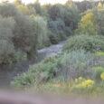 W ostatni, ciepły i spokojny wieczór lipca, wybrałem się na moją starą czatownię nad naszym stawem. W tym rejonie obwodu plan kozłów jest już wykonany dlatego, choć broń miałem ze […]