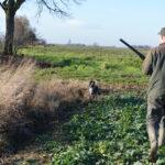 Szeroki, zarośnięty rów wychodzący w rozległe pole - po chwili Goran staje w pięknej stójce
