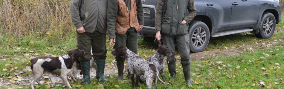 Przedostatni dzień sezonu polowania na kuropatwy, nałożony na sezon polowania na bażanty, zastał nas z Maćkiem pod Skalbmierzem. Mieliśmy ze sobą, znające łowisko, Gorana i Gapę. Wiele obiecywaliśmy sobie po […]