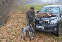 Sezon na bażanty już w pełni ale dopiero teraz wybraliśmy się z Maćkiem oraz Goranem i Gapę na koguty do naszego łowiska. Początek polowania 10.30, koniec 14.00 i na rozkładzie […]