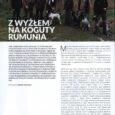 Moje wspomnienia z polowania na koguty w Rumunii w Magazynie SEZOM – zapraszam do przeczytania
