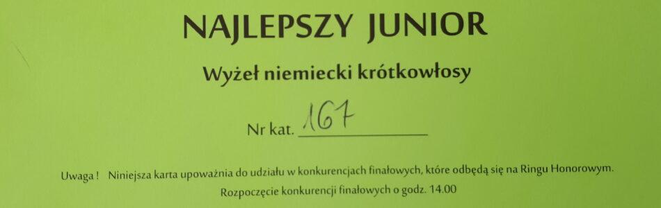 Miniony weekend upłynął pod znakiem wystaw w Konopiskach pod Częstochową. W sobotę i niedzielę startował z powodzeniem HAMAK, natomiast w niedzielę debiutowała HERA. Poniżej dokumenty i garść zdjęć. HAMAK ze […]